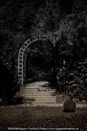 The gate to light and shadow